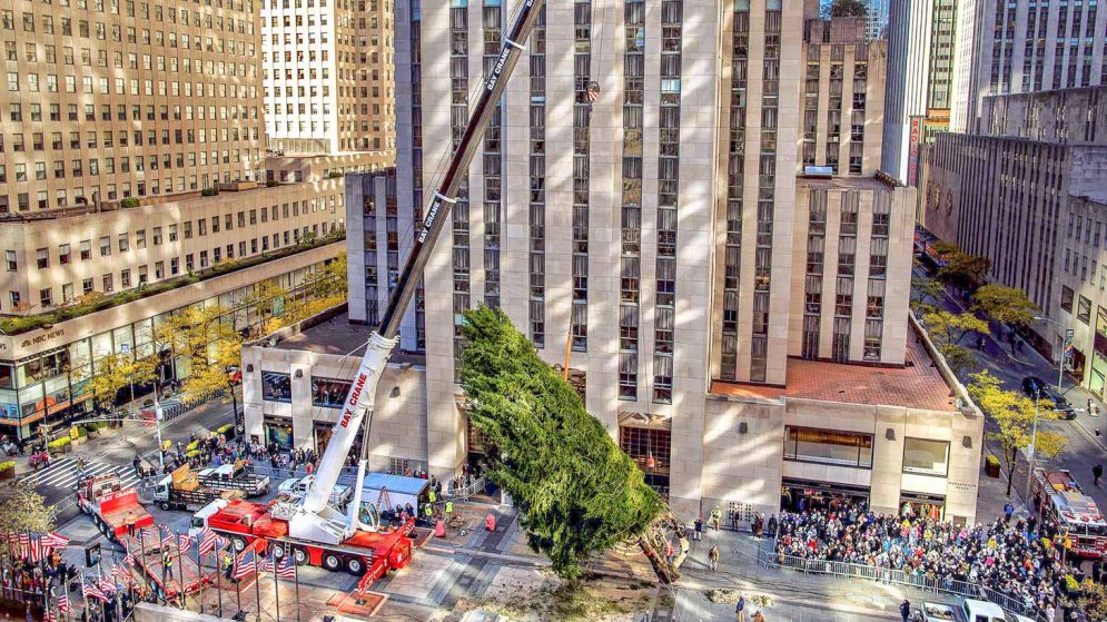Crane lifting Christmas Tree in Rockefeller Center